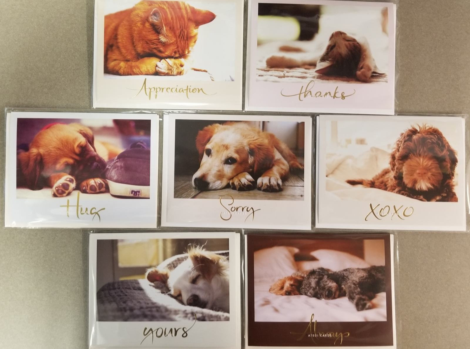 Image For GREETING CARDS: WITH CAT/DOG